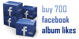 buy 700 facebook album likes
