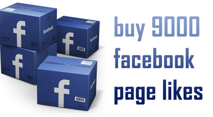 buy 9000 facebook page likes